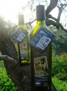 Frisch abgefülltes Tsounati-Olivenöl