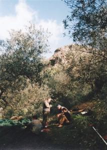 Weil die Olivenernte anstrengend ist, sind Pausen dringend angeraten.